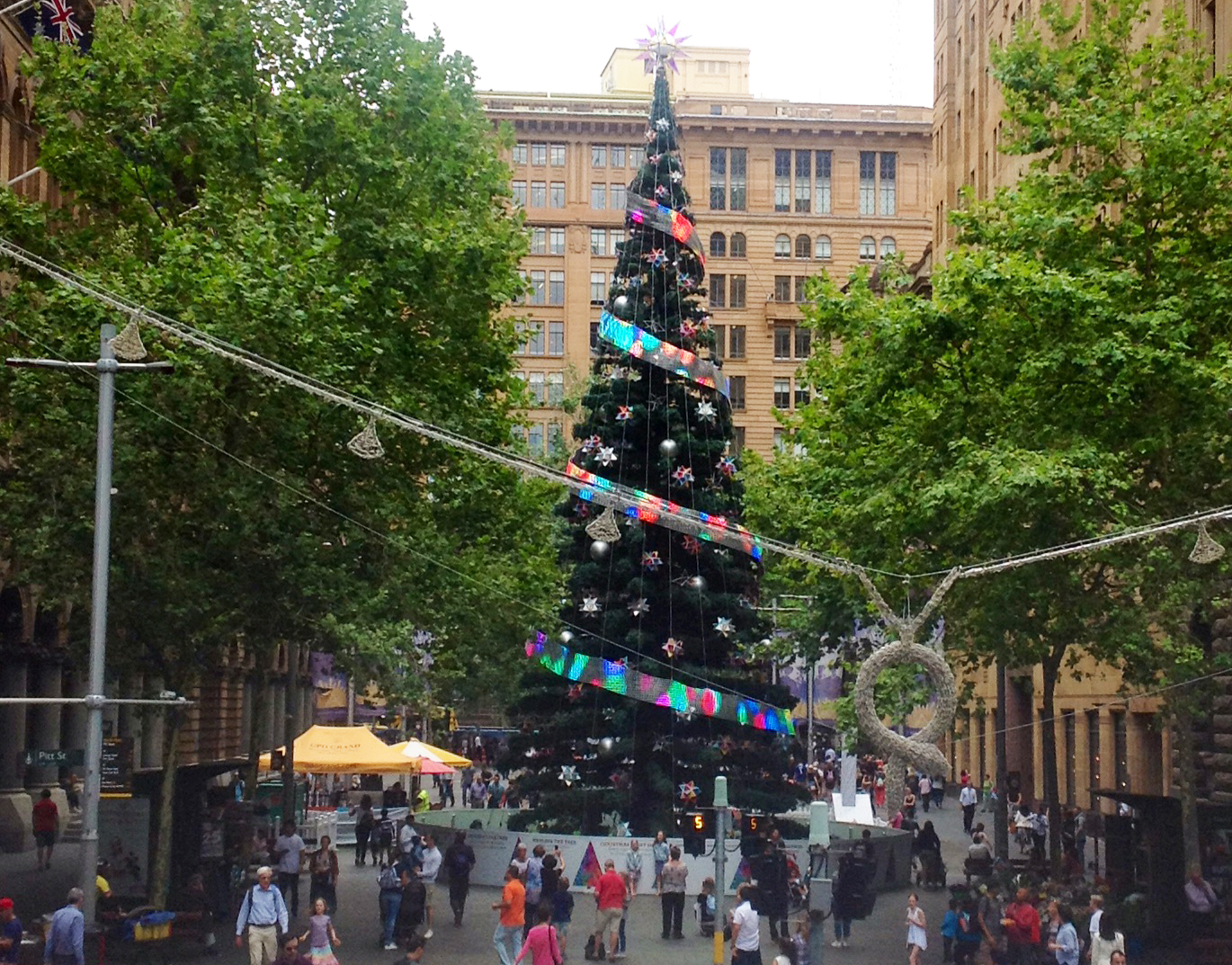 The arrival of the festive season in Sydney is marked by the appearance of the Martin Place Christmas tree.