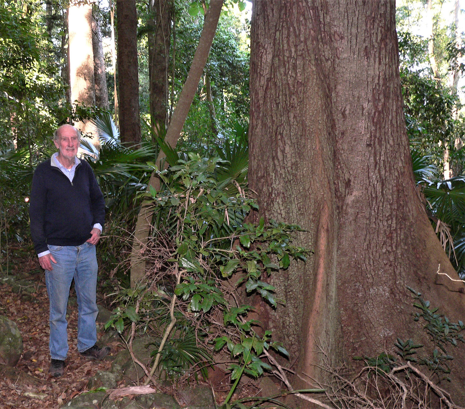 Peter McAra standing next to ared cedar trees